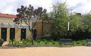 Orangeriet_Folkets-bspark-2