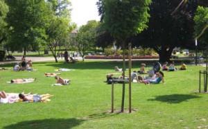 Orangeriet_Folkets-bspark-4