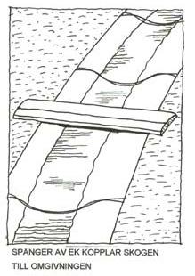 VARA-21